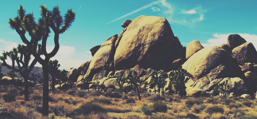 Joshua Tree's rock climbing grades are more difficult than expected.