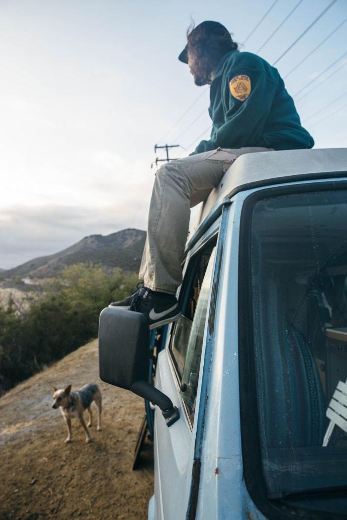 California Van Dog Lookout-min